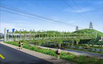 人行道绿化带设计 JPG