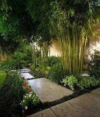 庭院植物配置意向图 JPG