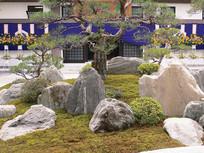 假山植物景观