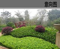 花坛造型与配置 JPG