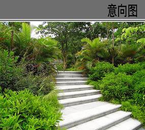 台阶植物配置