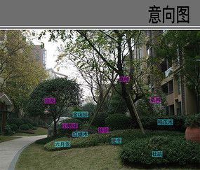 小区绿地花坛配置详图