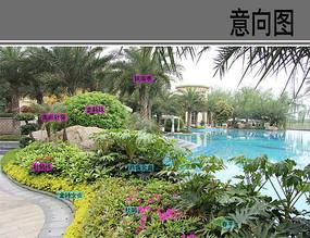 泳池边花坛配置详图
