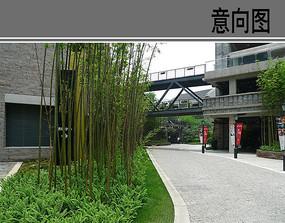 竹子植物配置