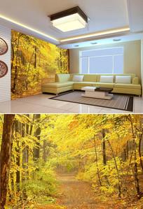 秋天黄色树林背景墙
