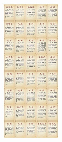 中医养生药材台贴设计 CDR
