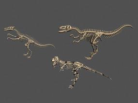 3dmax模型恐龙骨骼