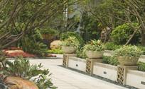 路边的花坛景观 JPG