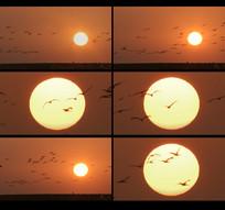黄昏夕阳西下视频