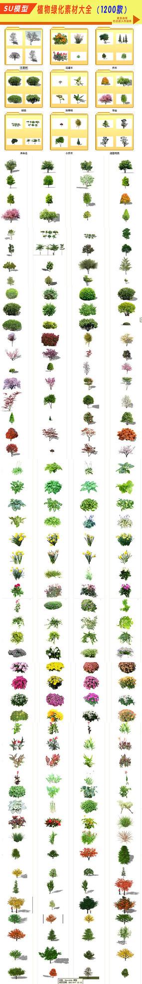 SU植物绿化大全素材 skp