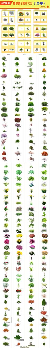 SU植物绿化大全素材