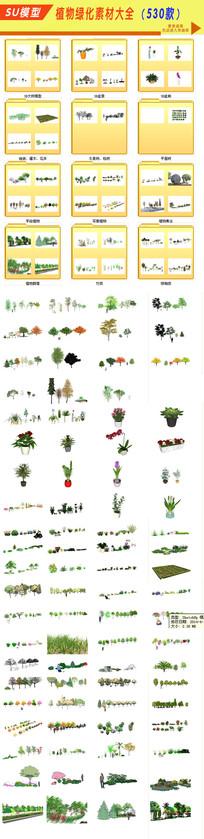 园林树木植物模型