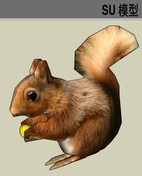 3D动物松鼠SU模型