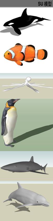 3D海洋动物SU模型合集 skp