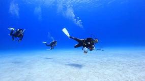 海底世界水族馆海底生物