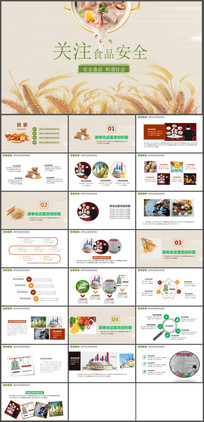 关注食品安全宣传PPT模板