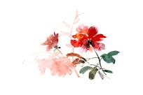红色的花插画
