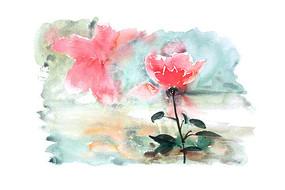 红色花卉插画 PSD