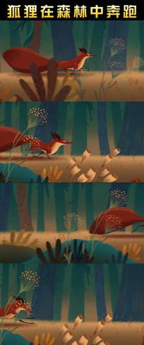 狐狸在森林中奔跑动态视频