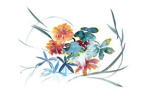 美丽的花插画 PSD