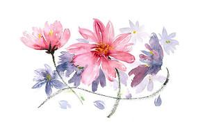 美丽的花卉插画 PSD