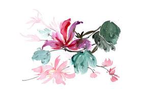盛开的花朵插画 PSD