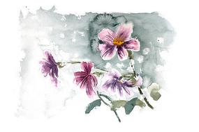 紫色花卉插画 PSD
