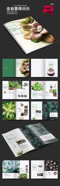 时尚清新绿色多肉产品画册