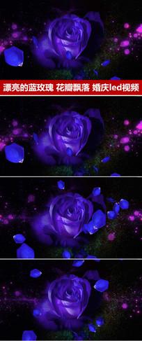 紫色玫瑰花婚礼背景视频