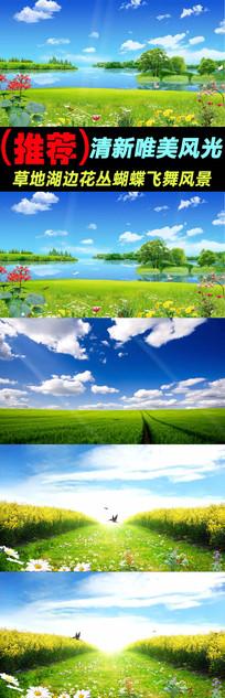 草地湖边花丛蝴蝶飞舞视频素材