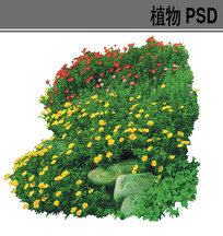 草本花卉ps素材