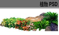草本花卉植物ps素材