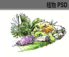 灌木组合手绘植物PS素材