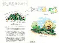 绿地植物种植手绘图