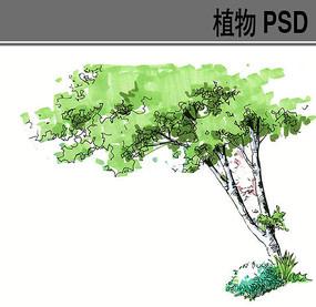 前景树手绘ps素材