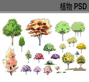 手绘彩色植物psd素材 PSD
