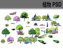 手绘植物素材PS素材