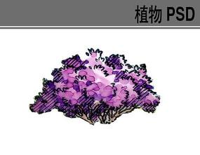 手绘紫色小灌木ps素材