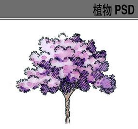 手绘紫色小乔木ps素材