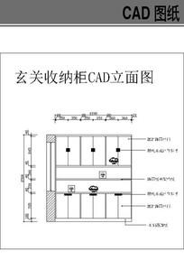 玄关收纳柜CAD立面图