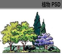 植物配置手绘ps素材