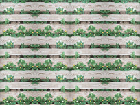 复古怀旧木板纹理草莓花背景墙