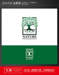 榕树绿叶环保高端标志 EPS