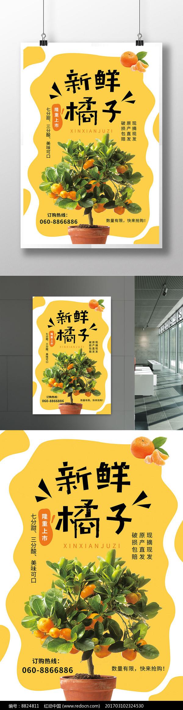 新鲜橘子水果宣传海报设计图片