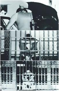 罪犯被抓获蹲在监狱里悔过视频 mp4