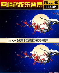 梅鹤月亮视频 mov