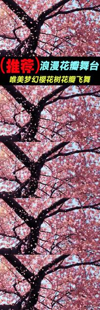 浪漫樱花树下花瓣飘落舞台视频