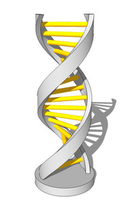 DNA造型雕塑su模型 skp