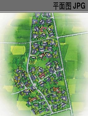 农村规划设计总体平面图