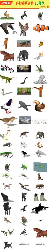 SU各种动物模型 skp